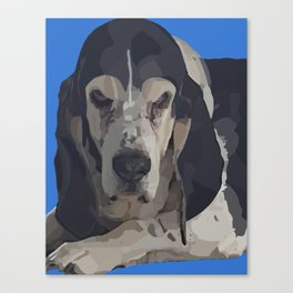 Fred the Basset Hound Canvas Print