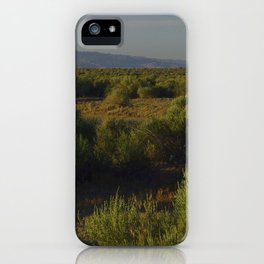 Sunrise and Sage iPhone Case