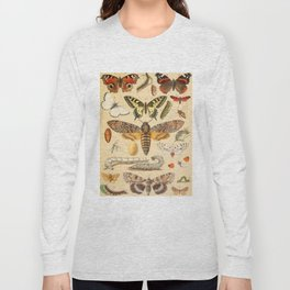 Popular History of Animals Butterfly Vintage Scientific Illustration Educational Diagrams Long Sleeve T-shirt