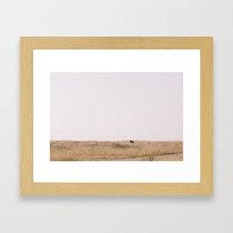 Wildebeest Framed Art Print