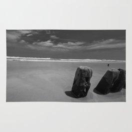 Calm beach on Assateague Island (black and white) Rug