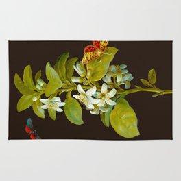Elisabeth Christina Matthes - Botanical Floral Insect Illustration Rug