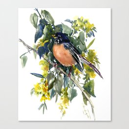 American Robin on Linden Tree Canvas Print