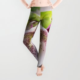 Gifts from the Garden Leggings