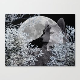 Winter Snow Wolf A830 Canvas Print