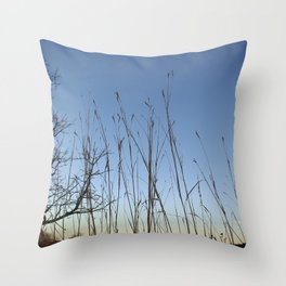 Prairie Twilight Throw Pillow