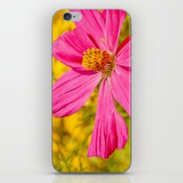 Pink beauty iPhone Skin