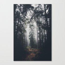 Dark paths Canvas Print
