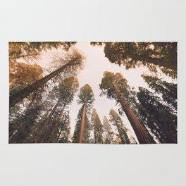 Sequoia Sunset Rug