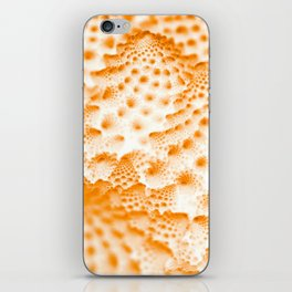 Orange Romanesco Rapture iPhone Skin
