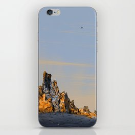 Desert Landscape 01 iPhone Skin