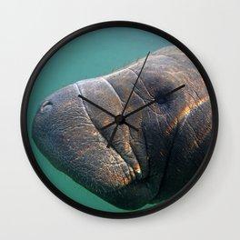 Manatee 3 Wall Clock