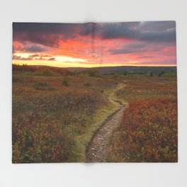 Dolly Sods Twilight Trail Throw Blanket