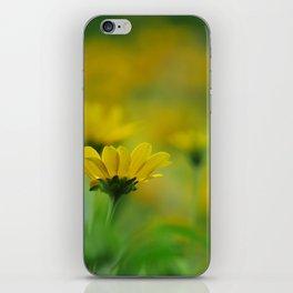 Blurs of Summer iPhone Skin