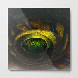 Magic Fish Eye Metal Print