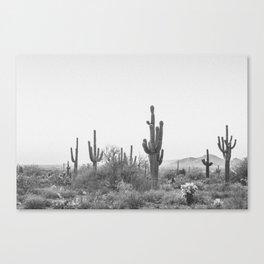 DESERT X / Scottsdale, Arizona Canvas Print