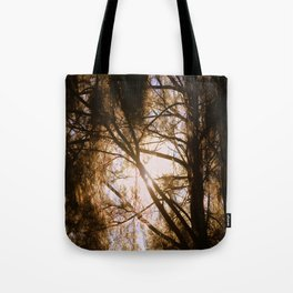 Sunlit Dreams Tote Bag