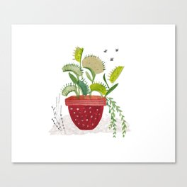 Fly Trap Canvas Print