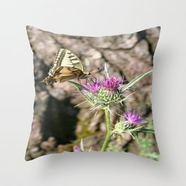 Scarce Swallowtail Butterfly and Thistle Throw Pillow