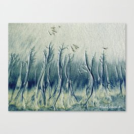 The Cypress Forest Canvas Print