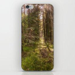 Summer forest iPhone Skin