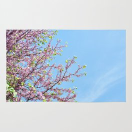 Blossoming Cercis siliquastrum or Judas tree Rug