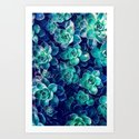 Plants of Blue And Green by perkinsdesigns