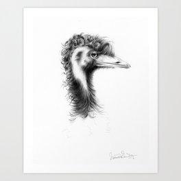 Emu Drawing Art Print