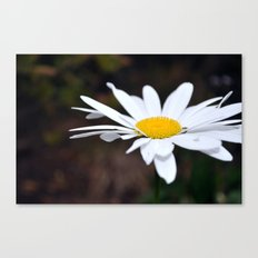 Singled Out Canvas Print