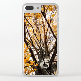 Artsy Orange 2 Clear iPhone Case