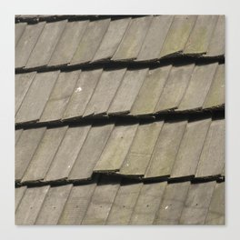 Texture #16 Roof tiles. Canvas Print