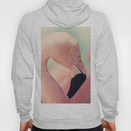 Pastel Flamingo Hoody