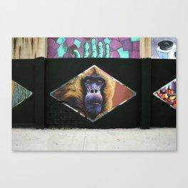 6 rombos Canvas Print