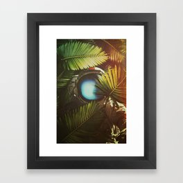 At Nature Framed Art Print