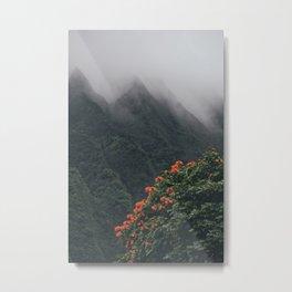 Beyond The Fog Metal Print