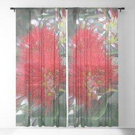 Red Flowering Gum Tree Sheer Curtain