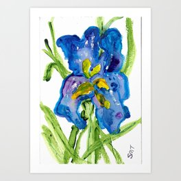 Iris 1 Art Print
