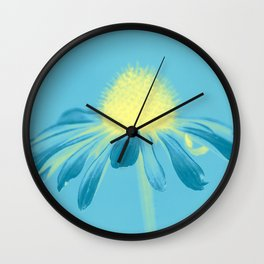 Echinacea in pastel shade Wall Clock