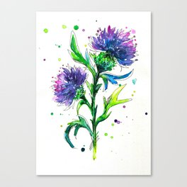 Thistle 2 Canvas Print