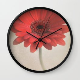 Single red daisy flower. Wall Clock