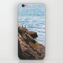 Opposing Views iPhone Skin
