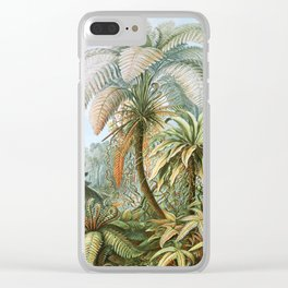Vintage Fern and Palm Tree Art - Haeckel, 1904 Clear iPhone Case