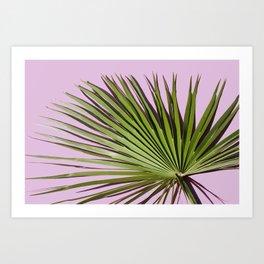 Palm on Lavender Art Print