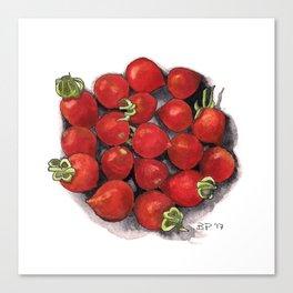 Mini tomatoes Canvas Print