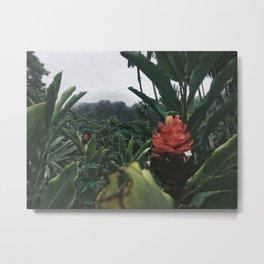 Misty Deep Rainforest Metal Print