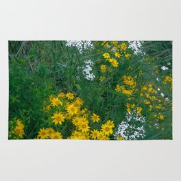 Flowers On the Edge Rug