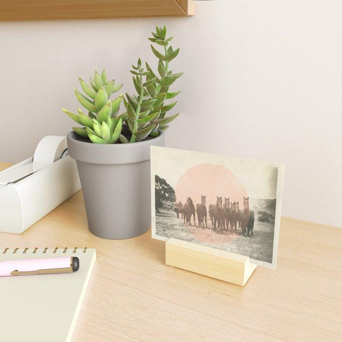Band of Horses - Peach Mini Art Print