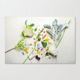 I Spy - botanical Green & Pink crafts Canvas Print