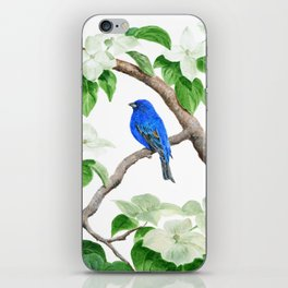Royal Blue-Indigo Bunting in the Dogwoods by Teresa Thompson iPhone Skin