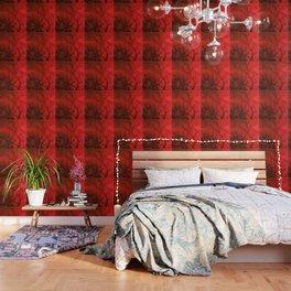 Bare Beech Wallpaper